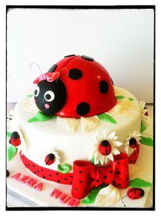 Ladybug Birthday Cake - Perfect cake for Betsy.