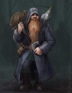 Dwarf Adventurer: Zoltan by CG-Warrior on DeviantArt