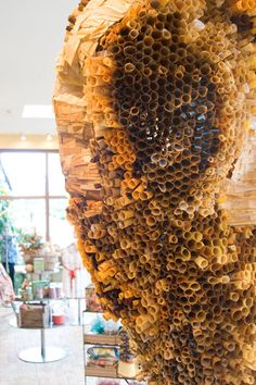 """Anthropologie """"honeycomb"""" made out of paper.  Amazing!"""