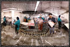 Watchword: Traceability – A third of the fish you buy isn't what you think it is. What's the solution to food fraud? Traceability.