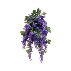 Purple Wisteria Bush | Silk Wedding Flowers | Easy Return Policy ($19) ❤ liked on Polyvore featuring home, home decor, floral decor, flowers, plants, backgrounds, floral, floral home decor, flower home decor and purple home decor