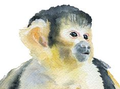 Monkey Watercolor Painting Giclee Print 8 x 10 by SusanWindsor