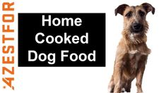 Home Cooked Dog Food🐶❤⭐ Recipe Chicken & Oatmeal Fluffy Sugar Cookies Recipe, Recipe Chicken, Chicken Recipes, Pasta Recipes, Dinner Recipes, Golden Potato Recipes, Food Network Recipes, Dog Food Recipes, Free Cat Food