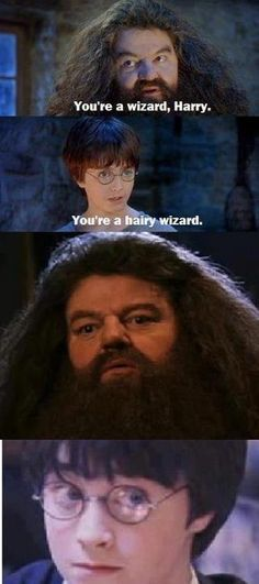 Harry Potter. I am not sure why this made me laugh so much.