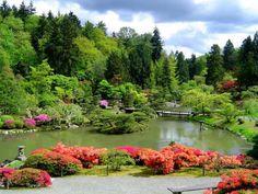 Como fazer um jardim japonês. Os jardins orientais, chineses e japoneses, são um espaço na natureza muito direcionado para a meditação. Assim sendo, enquanto que no ocidente se costuma associar jardins a lazer e convívio, os povos...