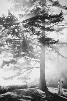 ryan flynn photography