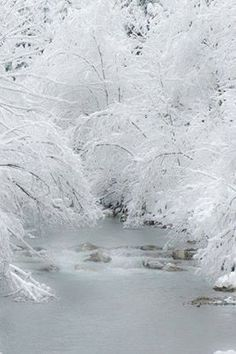 Beautiful Mother Nature — Beautiful Softness of Winter. I love Winter. I Love Snow, I Love Winter, Winter Snow, Winter White, Snow White, Fall Winter, Foto Picture, Winter Schnee, Snow Pictures