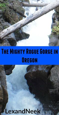 The mighty Rogue Gorge on the way to Crater Lake National Park in Oregon. See our video at: https://youtu.be/tqF9O5bH8vE #landscape #landscapes #landscape_lover #landscapelovers #scenery #instanature #instagood #nature_seekers  #nationalpark #nature #view #discoverearth #awesomeearth #artofvisuals #justgoshoot #wonderfulplaces #igers #explore  #blog  #traveladdict