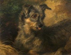'Ginger' -- by Edwin Henry Landseer (British, 1802/03--1873) photo credit: The Faculty of Advocates Abbotsford Collection Trust.
