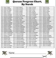 Quran progress chart, by surah