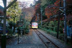 AUTUMN TAKAO-SAN 高尾山 by Ogino Taro