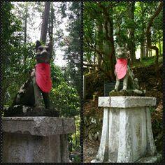 三峯神社 / mitsumine
