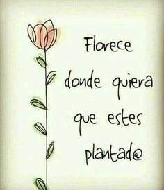 Quotes French, Spanish Quotes, Motivational Phrases, Inspirational Quotes, Positive Vibes, Positive Quotes, Happy Quotes, Life Quotes, Qoutes