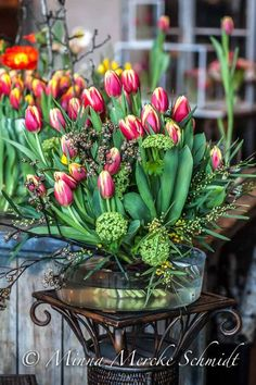 Grow tulips in glass containers to enjoy the beauty of the roots in addition to the greenery and pops of colour