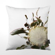 Bold, botanical designs for outdoor living accessories: cushions, umbrellas, trays, beach towels. Scatter Cushions, Pin Cushions, Throw Pillows, Black Bowl, Thing 1, Black Floor, Trim Color, African Design, Green And Grey