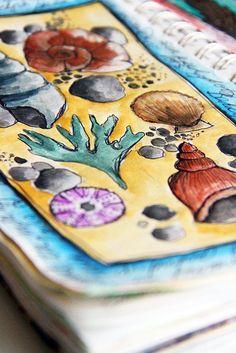 Line drawing seashells Art Science Museum, Science Art, Watercolor Journal, Watercolor Art, Sketchbook Cover, Sketchbook Prompts, Shell Drawing, Alisa Burke, A Level Art