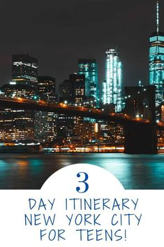 A day by day NYC itinerary for families with teens and tweens! This itinerary includes where to eat, suggestions on which hotel to stay at, and a lot of activities. Road Trip With Kids, Travel With Kids, Family Travel, Hyde Park, Top Nyc Attractions, Nyc Itinerary, Nyc With Kids, New York City Travel, Vacation Trips