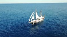 Yachts, Sailing Ships, Greek, Boat, Vehicles, Dinghy, Boats, Car, Greece
