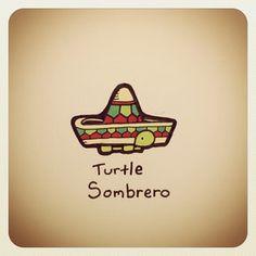 Turtle Wayne @turtlewayne Turtle Sombrero #...Instagram photo | Websta (Webstagram)