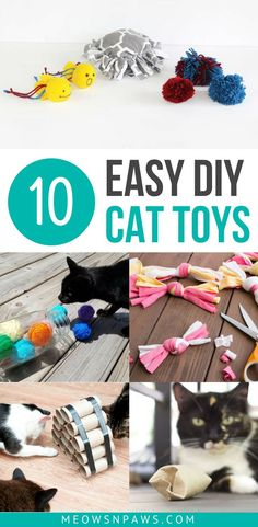 Do you want to put used toilet paper rolls, wine corks and old t-shirts to use? Take a look at these 10 ideas for easy no-sew DIY cat toys made of simple household items you no longer need! toys Easy DIY Cat Toys: Make Cat Toys Out of Household Items Diy Cat Toys, Homemade Cat Toys, Cat Crafts, Animal Crafts, Diy Animal Toys, Diy Jouet Pour Chat, Benny And Joon, Cat Anime, Kitten Toys