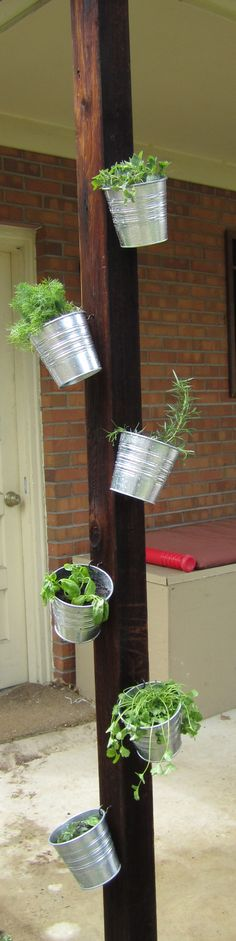 my vertical herb garden - I spruced up an old patio pole w/my favorite organic herbs potted in galvanized pots from ikea and hung from metal hooks. it keeps them elevated, in full sun and mobile for indoor growing in the winter!