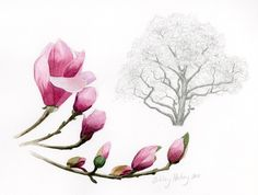 Magnolia Tree by FromSkytoSea on Etsy, $75.00 #design #print #nature #magnolia #watercolor