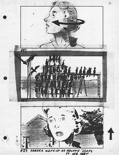 Storyboards for Alfred Hitchcock's The Birds.