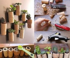 refrigerator magnet plants for out of wine corks