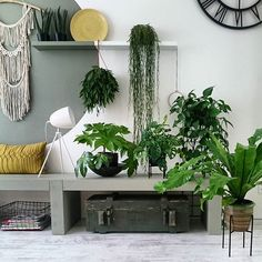 Fijne avond! 💚🍀 #instahome #livingroom #interieur #interior4all #ilovemyinterior #stoerwonen #inspiration #showhometop5 #interiorwarrior #myhome2inspire #inspo4all #inspiration #jungalowstyle #urbanjunglebloggers #scandichome #simple #styling #mijnhuisjeonline #vtwonen #camouflagegreen #karwei #aysushuisstyle Style Tropical, Deco Boheme, Jolie Photo, Green Fashion, Container Gardening, Projects To Try, Lounge, Inspiration, Photo And Video