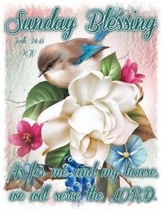 10 Best Sunday Blessings Quotes To Start Your Day Happy Sunday Quotes, Blessed Sunday, Blessed Quotes, Morning Quotes, Good Sunday Morning, Sunday Love, Sunday Greetings, Everyday Prayers, Morning Greeting