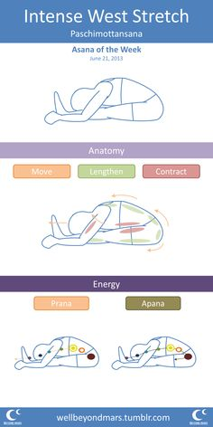 #Asana of the Week: Intense West Strech Short form, hit my blog for the more elaborate version from this past Monday.