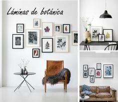 DECORAR CON LÁMINAS DE BOTÁNICA + LAMINAS IMPRIMIBLES | Decoración