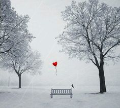 black and white drawing with one red heart balloons - Yahoo Image Search… My Love Story, I Love Heart, Small Heart, Heart Balloons, Red Balloon, Black And White Drawing, Heart Art, Belle Photo, Color Splash