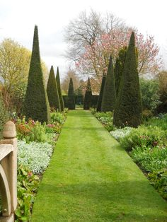 lesley and john jenkins / yew walk, wollerton old hall garden