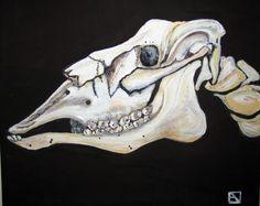 Akryylimaalaus Poron kallo