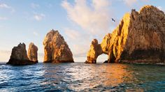 "Vacation Spot: ""Cabo San Lucas"" Music: ""Dave Grohl, Adele, Lorde and Pharrell Williams."""