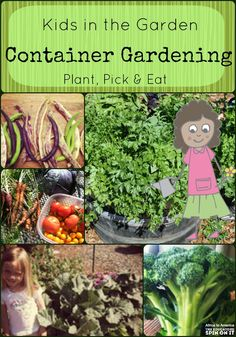 Gardening with Kids Plant, Pick, & EAT! Learning about growing with container gardens. A great way for kids to garden in small spaces. Learning about growing with container gardens. A great way for kids to garden in small spaces. Container Gardening Vegetables, Vegetable Garden, Garden Container, Plant Containers, Gardening For Beginners, Gardening Tips, Gardening Quotes, Kitchen Gardening, Gardening Books