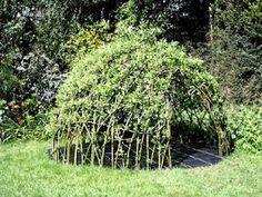 Marvelous Kiddo: willow dens