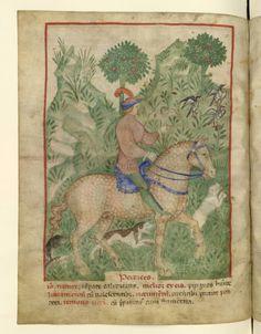 Nouvelle acquisition latine 1673, fol. 67v, Chasse à la perdrix. Tacuinum sanitatis, Milano or Pavie (Italy), 1390-1400.