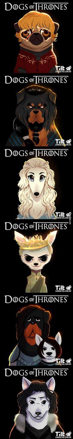Mi piacciono questi cani coi capelli.