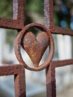 formes et couleurs de la vie - life, shapes in color I Love Heart, Happy Heart, My Heart, Heart In Nature, Heart Art, Love Symbols, Belle Photo, Metal Art, Heart Shapes