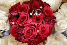 Bouquets photo by on Weddingbee. Red Roses and Min Bridal Flowers, Bridal Bouquets, Red Roses, Real Weddings, Wedding Stuff, Bride, Plants, Inspiration, Wedding Bride