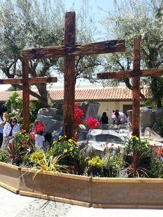 Calvary Chapel Dove | Maranatha Chapel | Pinterest | Savannah ...