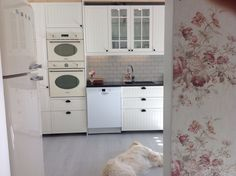 The #kitchen Will soon be ready. #köket börjar bli klart. Our #golden retriever loves the new kitchen. Vår #goldenretriever älskar vårt nya kök #ikea #kroktorp #köksrenovering #homemakeover #lantligt #lantligtkök