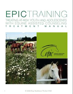 equine therapy research paper Aha, inc keeps a regularly updated bibliography to aid in locating relevant  research our magazine, hippotherapy, has featured a variety of high-quality  articles.