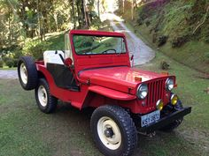 1951 Willys CJ-3A - Photo submitted by Roberto Silveira.