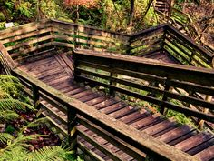 Incredible Places in Florida You May Have Never Heard Of