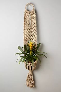 Macrame Plant Hanger by Anthropologie in Beige, Decor Macrame Plant Hanger Patterns, Macrame Plant Hangers, Macrame Patterns, Plant Hanger Diy, Macrame Curtain, Macrame Hanging Planter, Hanging Planters, Anthropologie, Jewelry Display Stands