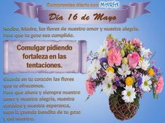 Tableware, Amor, Sick, Virgin Mary, Engagement, Prayers, Woman, Flowers, Dinnerware