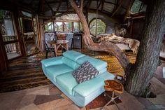 Lionel Buckett tree house avustralya agac ev otel 4